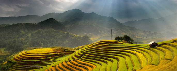 Ha Giang Rice Fields, Vietnam
