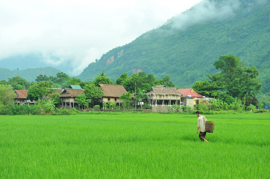 The Thai's Ethnic Villages in Mai Chau Valley
