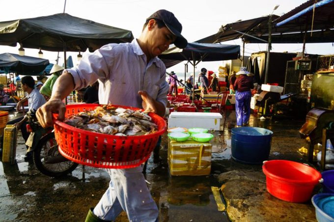Seafood merchant at Hoi An fish market