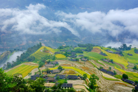 Hoang Su Phi Terraced Rice Fields in Ha Giang Vietnam